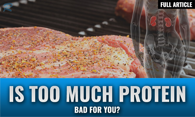 is too much protein bad for you