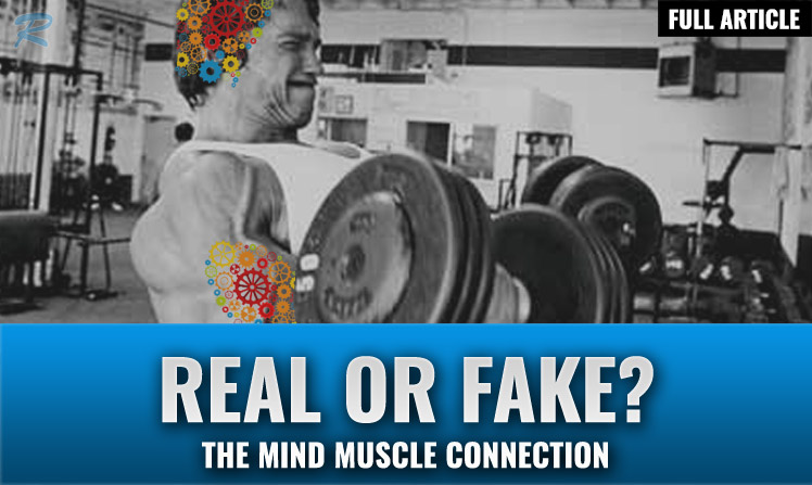 is the mind muscle connection real