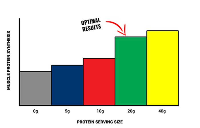 how much protein after workout