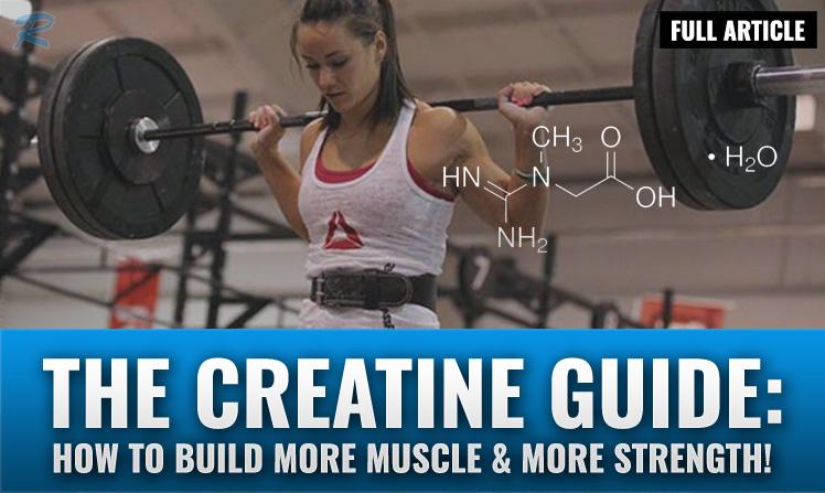 creatine guide