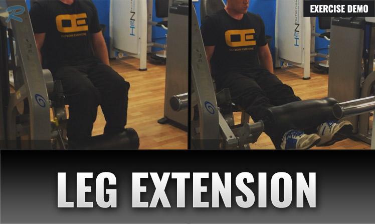 LEG EXTENSION DEMO